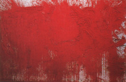 Hermann Nitsch *1938
