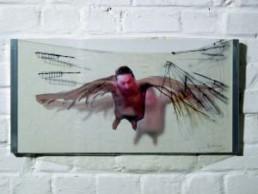 BOLENZ, ULRIKE >Ikar - vol< 2003 Fotografie, Malerei auf Plexiglas 25 x 50 x 10cm Besitz der Künstlerin