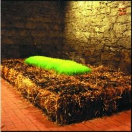 Hans-OISEAU *1940 >Monument für eine Lerche< 1977 Strohballen, grünender Weizen, Lautsprecher, Lerchengesang ca. 65 x 300 x 500 cm Besitz des Künstlers