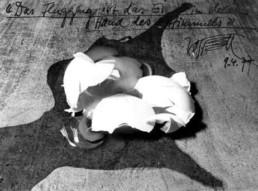 Wolf Vostell 'Das Flugzeug ist das Ei in der Hand des Himmels' S/W-Foto mit handschriftlichem Text von Vostell 24 x 30 cm Sammlung Kalkmann, Bodenburg